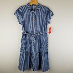 Blue Pinstripe Belted Shirtdress NWT